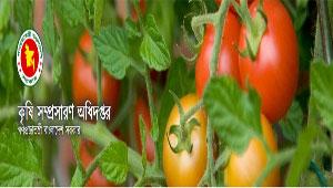 Department Of Agricultural Extension Job Circular 2015